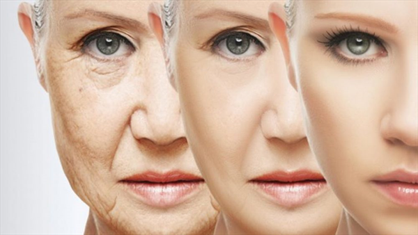https://www.drthurston.com/Portals/209/SunBlogNuke/1465/10 Facts about Aging and Wrinkles.jpg